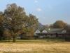 Beverley Thatch Cottage (4.) (3)
