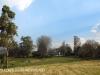 Beverley Thatch Cottage (4.) (5)