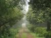 Dargle -   Cluny Farm - Herb Cottage - Entrance gates - (4).JPG