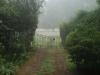 Dargle -   Cluny Farm - Herb Cottage - Entrance gates - (5).JPG