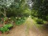 Dargle -   Cluny Farm - Herb Cottage - entrance -  (1)