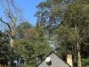 Dargle Farm -  cottage  (3)