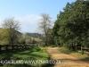 Dargle Farm - driveway (1)