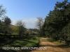 Dargle Farm - driveway (2)
