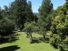 Owthorne Farm - Dargle - garden (1)
