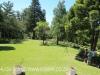 Owthorne Farm - Dargle - garden (4)