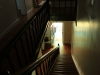 Owthorne Farm - Dargle - interior staircase (10)
