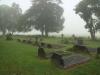 Dargle - St Andrews Church - Cemetary  - general views  (7).JPG