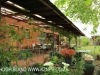 Inglenook Farm - cottage verandah (1)