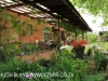 Inglenook Farm - cottage verandah (2)