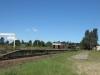 donnybrook-station-s29-55-16-e-29-52-26-elev-1375m-15