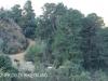 Cavern Berg Cow slip dam trail (1)