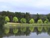 Lake Navarone tree reflections (12)