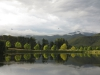 Lake Navarone tree reflections (21)