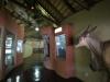 Didima Rock Art Centre (5)