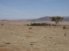 adelaide-farm-view-to-dundee-s28-01-955-e30-13-382-elev-1264m-7