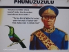 Blood River - eNcome Museum - King Phumuzukulu
