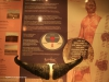 Blood River - eNcome Museum - Museum interior -  (10)