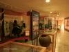 Blood River - eNcome Museum - Museum interior -  (9)