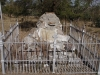 dundee-talana-museum-lt-gen-w-penn-symons-site-of-wounding-20-10-1899-s28-09-320-e30-15-8