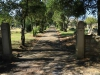 Dundee Cemetery - Grave -Entrance 1948