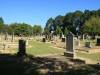 Dundee Cemetery - Grave - general views (5)