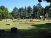 Dundee Cemetery - Grave - general views (8)