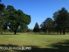 Dundee - Country Club fairways (2)