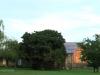 Dundee - Lennox farm a - guest cottage