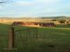 Dundee - Lennox farm a - old pig sty  (1)