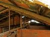Dundee - Lennox farm a - old pig sty  (7)