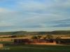 Dundee - Lennox farm a - old pig sty  (9)