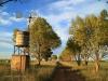Dundee - Lennox farm a - windmill  (1)