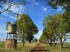 Dundee - Lennox farm a - windmill  (2.) (2)