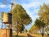 Dundee - Lennox farm a - windmill  (8)
