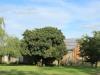 Dundee - Lennox farm - guest cottage  (2)