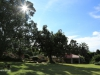 Dundee - Thornley Farm - Gardens (2)