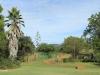 Dundee - Thornley Farm - Gardens (3)
