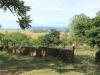 Dundee - Thornley Farm - sheds - stabling - cattle pens (4)