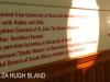 IAC - City Hall - Rodney Harber exhibition (20)