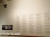 IAC - City Hall - Rodney Harber exhibition (31)