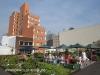Rooftop Gardens 77 Monty Naiker (Pine) Street (18)
