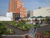 Rooftop Gardens 77 Monty Naiker (Pine) Street (4)