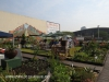 Rooftop Gardens 77 Monty Naiker (Pine) Street (5)