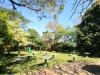 DURBAN St Thomas Musgrave  gardens