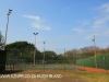 Bluff Brighton Tennis Club courts (2)