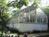 Berea-Botanic-Garden-Herbarium-Glass-Houses-10