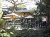 Berea-Botanic-Garden-Tea-Garden-S-29.50.717-E-31.00.437-Elev-15m-1