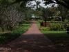 Botanic-General-2