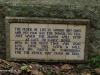 Botanic-plaque-The-Clock-of-Life
